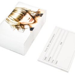 Agenda Hair Appointment Cards Blonde (100)